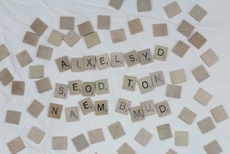 Dyslexia does not mean dumb