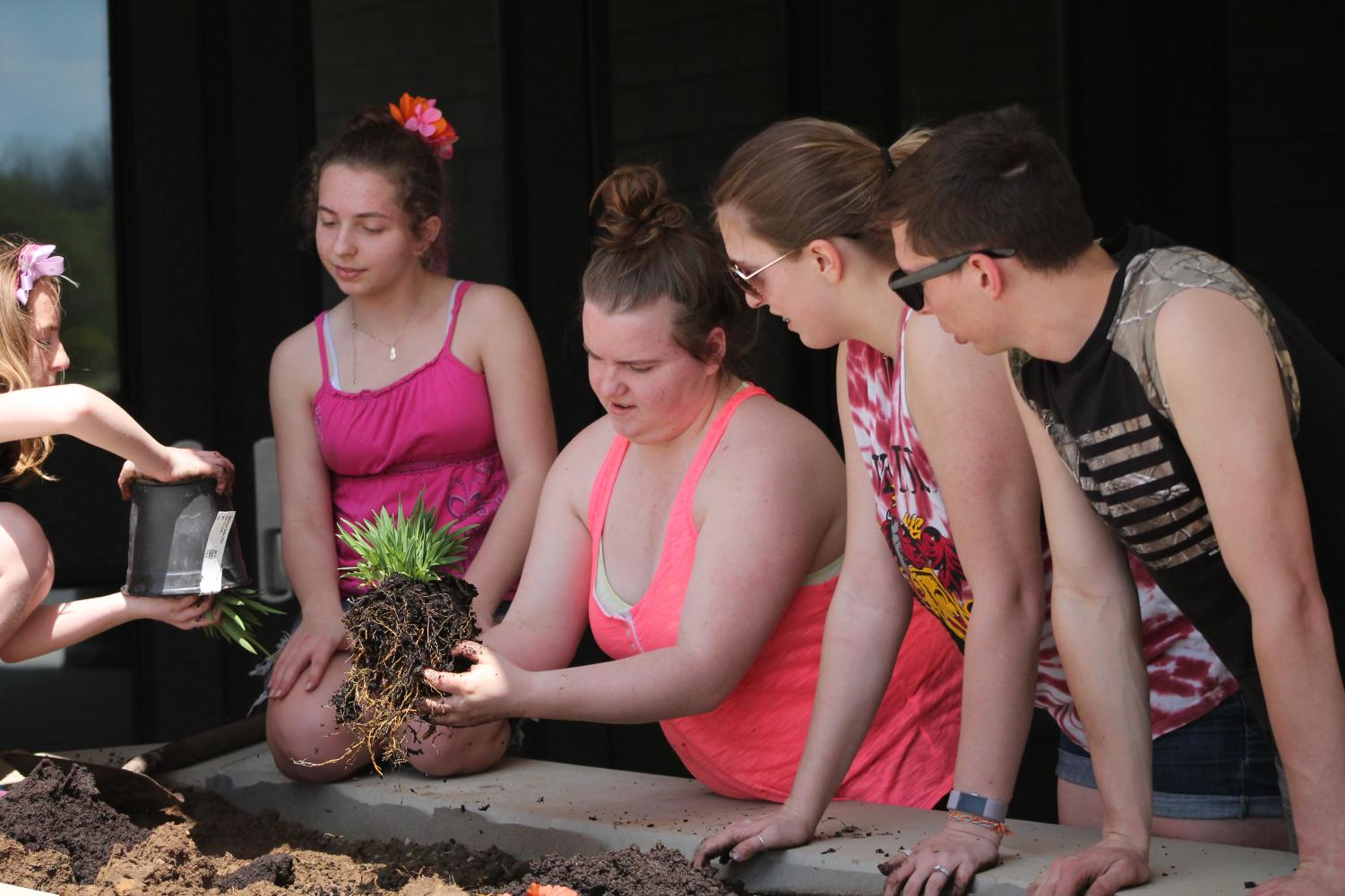 Contributing to the cause, senior Tori Shepard spent her Saturday planting flowers, such as hemerocallis, with the rest of the crew. Because students kept saying the landscape of the school looked like a jail, a beautification crew planted a variety of pollinator friendly plants outside the school.