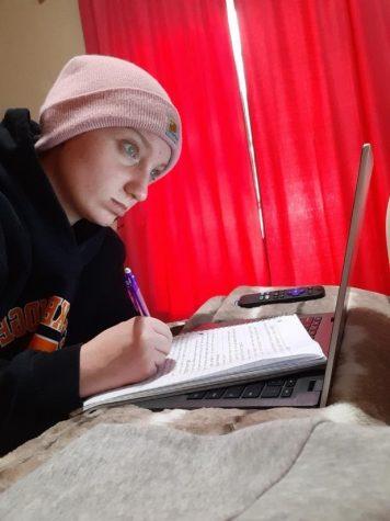 Students struggle online